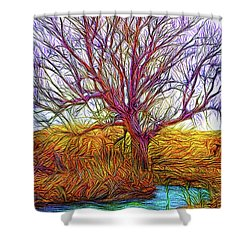 A Tree Greets Springtime Shower Curtain