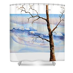 A Tree In Another Dimension Shower Curtain