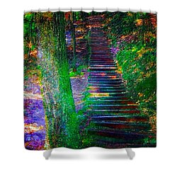 A Trek Shower Curtain by Iowan Stone-Flowers