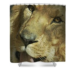 A Tribute To Elson 3 Shower Curtain by Ernie Echols