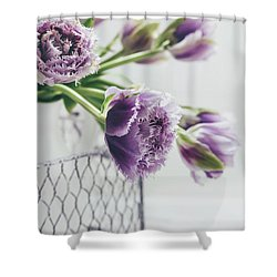 Shower Curtain featuring the photograph A Tulip Moment by Kim Hojnacki