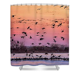 A Vibrant Evening Shower Curtain