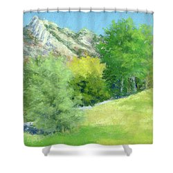 A View From Murray Park Shower Curtain