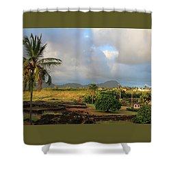 A View Of Prince Kuhio Park Shower Curtain by Bonnie Follett