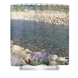 Shower Curtain featuring the photograph A View To A View by Marie Neder