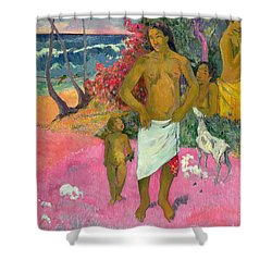 A Walk By The Sea Shower Curtain by Paul Gauguin