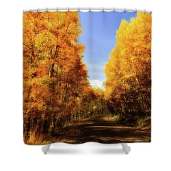 A Walk Down Memory Lane Shower Curtain by Rick Furmanek