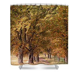 A Walk In The Countryside Shower Curtain