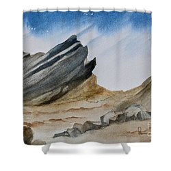 A Walk In The Desert Shower Curtain