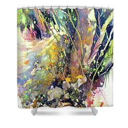 A Walk In The Forest Shower Curtain by Rae Andrews