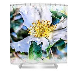 A Walk In The Garden Shower Curtain