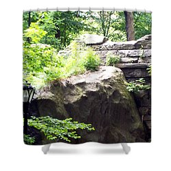 Shower Curtain featuring the photograph A Walk In The Park by Lola Connelly