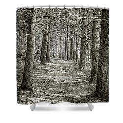 Shower Curtain featuring the photograph A Walk In Walden Woods by Ike Krieger