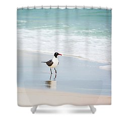 A Walk On The Beach Shower Curtain by Shelby  Young