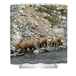 A Walk On The Wild Side Shower Curtain