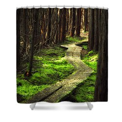 Shower Curtain featuring the photograph A Walk Through The Bog by Robert Clifford