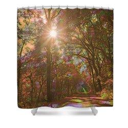 A Walk Through The Rainbow Forest Shower Curtain