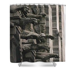 A Wall Of Gargoyles Notre Dame Cathedral Shower Curtain