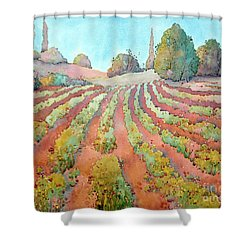 A Way Of Life Shower Curtain by Joyce Hicks