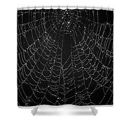 A Web Of Silver Pearls Shower Curtain