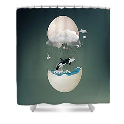 A Whale Of A Tale Shower Curtain