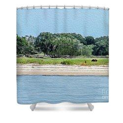 A Wild Horse Grazing Shower Curtain