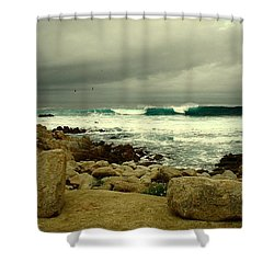Shower Curtain featuring the photograph A Winter Day At The Beach by Joyce Dickens