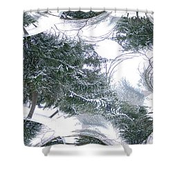 A Winter Fractal Land Shower Curtain