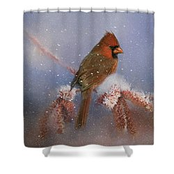 A Winters Day Shower Curtain by Lana Trussell
