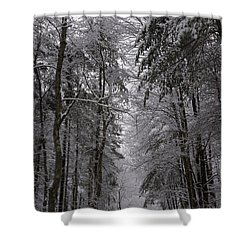 A Winters Path Shower Curtain