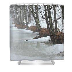 A Winter's Scene Shower Curtain by Karol Livote