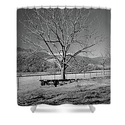 A Wintery Stand Shower Curtain