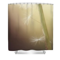Shower Curtain featuring the photograph A Wish And A Prayer by Amy Tyler