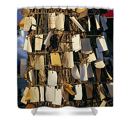 A Wishing Tree With Many Requests Shower Curtain by Yali Shi
