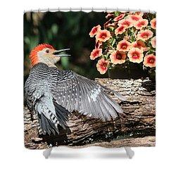 A Woodpecker Conversation Shower Curtain by Sheila Brown