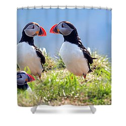 A World Of Puffins Shower Curtain