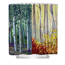 A Year In A Birch Forest Shower Curtain by Stanza Widen