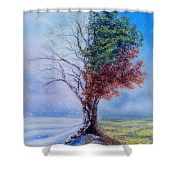 A Year In The Tree Of Life Shower Curtain by Stanza Widen