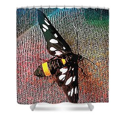 A Yellow Belted Burnet Shower Curtain