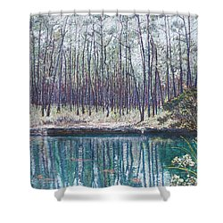 Abaco Blue Hole Shower Curtain
