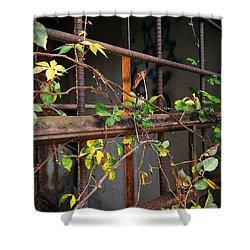Abandoned Light Shower Curtain