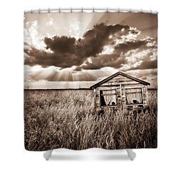 Abandoned Shower Curtain by Meirion Matthias