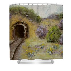 Abandoned Mine Shower Curtain