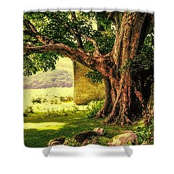 Abandoned Ruins Shower Curtain by Jenny Rainbow