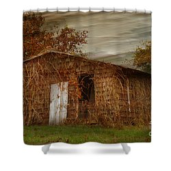 Abandoned Shower Curtain by Tamera James
