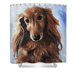 Abby Shower Curtain by Diane Daigle