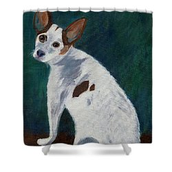 Shower Curtain featuring the painting Abby by Jamie Frier