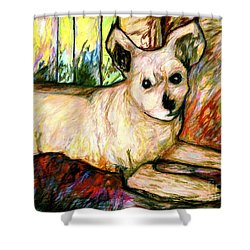 Abby Shower Curtain