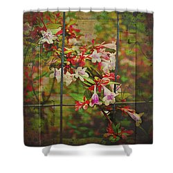 Abelia Coming Through Shower Curtain