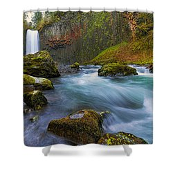 Abiqua Falls In Spring Shower Curtain by David Gn
